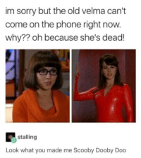 Funny, Phone, and Sorry: im sorry but the old velma can't  come on the phone right now.  why?? oh because she's dead!  stalling  Look what you made me Scooby Dooby Doo