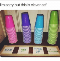 Af, Funny, and Sorry: I'm sorry but this is clever asf  DTF5ingle  AF  TAKEN!  4'5 😏