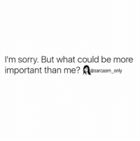 SarcasmOnly: I'm sorry. But what could be more  important than me? Aesarcasm_ only SarcasmOnly