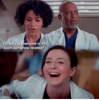[Everyone's Related.] — Season 11, Episode 2 — question; Who is your favorite out of this scene? — ameliashepherd greysanatomy richardwebber maggiepierce — Forgot the semicolon...great.: Im sorry is everyone in this  room somehow related? [Everyone's Related.] — Season 11, Episode 2 — question; Who is your favorite out of this scene? — ameliashepherd greysanatomy richardwebber maggiepierce — Forgot the semicolon...great.