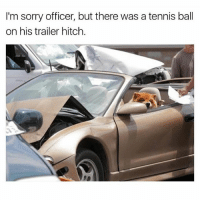 10-10 meme (@davie_dave): I'm sorry officer, but there was a tennis ball  on his trailer hitch. 10-10 meme (@davie_dave)