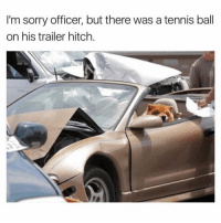 Funny, Instagram, and Meme: I'm sorry officer, but there was a tennis ball  on his trailer hitch. @pubity was voted Best meme account on Instagram 🥇