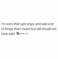 Funny, Memes, and Sorry: I'm sorry that I got angry and said a lot  of things that I meant but still should not  have said. esarcasm, only SarcasmOnly