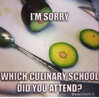 Memes, 🤖, and Watermark: I'M SORRY  WHICH CULINARY SCHOOL  biz life  DID YOU ATTEND  Watermark it So this is how it's done?