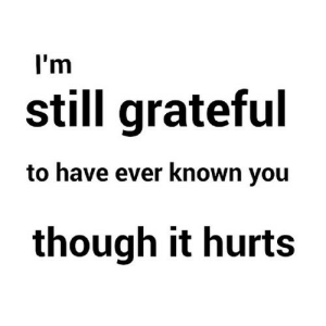 Net, You, and Hurts: I'm  still grateful  to have ever known you  though it hurts https://iglovequotes.net/