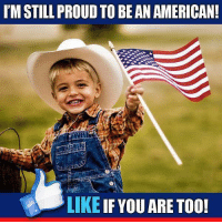 Memes, Proud, and 🤖: IM STILL PROUD TO BE AN AMERICAN!  LIKE  IF YOU ARE TOO! America's Freedom Fighters