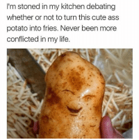 Ass, Cute, and Life: I'm stoned in my kitchen debating  whether or not to turn this cute ass  potato into fries. Never been more  conflicted in my life. @boyswhocancook