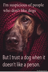 EpicLOL.com: I'm suspicious of people  who don't like dogs  But I trust a dog when it  doesn't like a person  Ron Burg und y101 EpicLOL.com