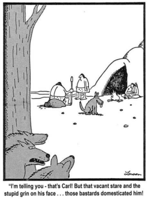 """Genius, Him, and Gary Larson: """"I'm telling you that's Carl! But that vacant stare and the  stupid grin on his face..those bastards domesticated him! Gary Larson was a genius"""