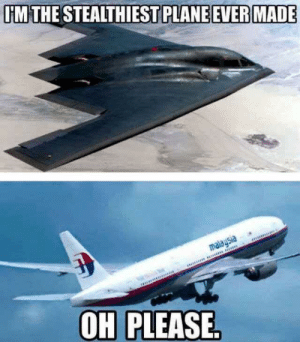 Plane, Made, and Please: IM THE STEALTHIEST PLANE EVER MADE  OH PLEASE E