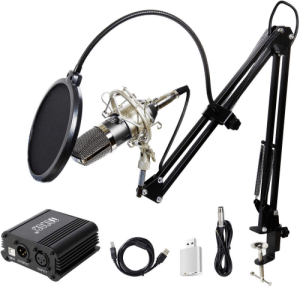 Im thinking about buying this microphone( link in discription.) Now im uncertain if Im able to use this microphone due to the fact that I dont have an audio cart. Do I need one perse for these type of microphones to work?: Im thinking about buying this microphone( link in discription.) Now im uncertain if Im able to use this microphone due to the fact that I dont have an audio cart. Do I need one perse for these type of microphones to work?