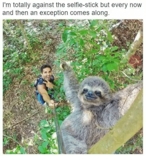 Cute, Funny, and Selfie: I'm totally against the selfie-stick but every novw  and then an exception comes along cute selfie via /r/funny https://ift.tt/2ygyOoC