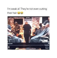 Af, Love, and Hair: I'm weak af. They're not even cutting  their hair  llywood  LOVE &HIp  11:00PM Anything for tv
