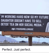 Future, Social Media, and Good: IM WORKING HARD NOW SO MY FUTURE  DAUGHTER DOESNT HAVE TO SELL  DETOX TEA ON HER SOCIAL MEDIA.  MARSHMELLOMUSIC  Perfect. Just perfect. What a good parent via /r/wholesomememes http://bit.ly/2Sx6uXd