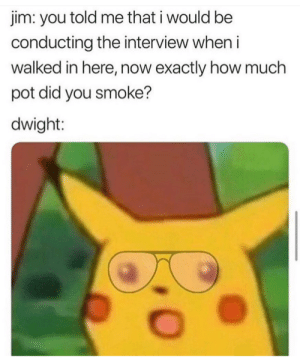 The Office, Michael, and The Interview: im: you told me that i would be  conducting the interview when i  walked in here, now exactly how much  pot did you smoke?  dwight: Michael!