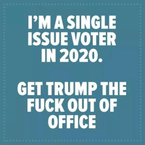 Voter: I'MA SINGLE  ISSUE VOTER  IN 2020.  GET TRUMP THE  FUCK OUT OF  OFFICE