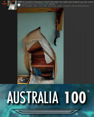 Reddit, Australia, and Image: image A massive kangaroo bust through my wall and fucked up my room  2160  submitted 5 hours ago by sarahtonin420 [+1]  172 comments share save hide give award report crosspost hide all child comments  AUSTRALIA 100 calm down joey