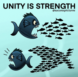 [Image] Never underestimate the strength of the collective if you want to achieve great things in life: [Image] Never underestimate the strength of the collective if you want to achieve great things in life