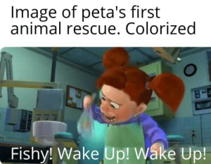 fakehistory:  Peta's first rescue (2015): Image of peta's first  animal rescue. Colorized  Fishy! Wake Up! Wáke Up fakehistory:  Peta's first rescue (2015)