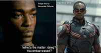 8 Mile, Memes, and 8 Miles: Image Source Marvel  Image Source  Universial Pictures  Whats the matter, dawg?  You embarrassed? Anthony Mackie - 37 Papa Doc (Clarence) - 8 Mile Now Falcon in the Captain America series.