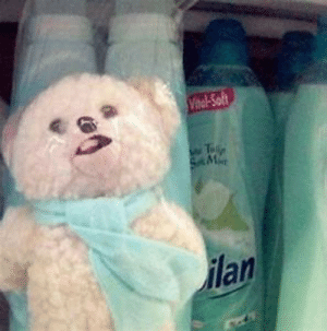 Images of Snuggle Bear Funny - #Summer: Images of Snuggle Bear Funny - #Summer