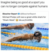 lmfaoooo ~ Ryan - @lettuce.scream [ funny memes meme comedy comics cool textpost textposts l4l likeforlike laugh funnypictures pictures funnymemes humor post relateable ]: Imagine being so good at a sport you  can no longer compete against humans  Bleacher Report  @BleacherReport  Michael Phelps will race a great white shark for  Shark Week  ble.ac/2rnH5ln  PHELPS lmfaoooo ~ Ryan - @lettuce.scream [ funny memes meme comedy comics cool textpost textposts l4l likeforlike laugh funnypictures pictures funnymemes humor post relateable ]