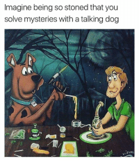 I'd have Daphne high af doing freaky shit with me in the back of the mystery machine!: Imagine being so stoned that you  solve mysteries with a talking dog  (o) 1인 I'd have Daphne high af doing freaky shit with me in the back of the mystery machine!