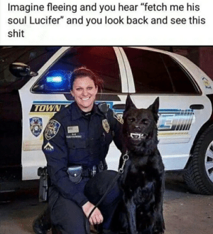 "Reddit, Shit, and Lucifer: Imagine fleeing and you hear ""fetch me his  soul Lucifer"" and you look back and see this  shit  TOWN  KYNOWE Fetch me their soul"