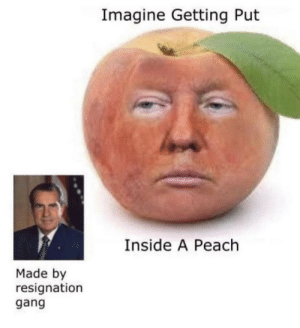 Just imagine...: Imagine Getting Put  Inside A Peach  Made by  resignation  gang Just imagine...