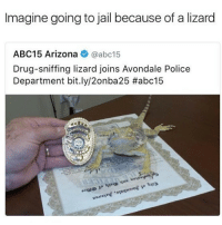Jail, Police, and Snitch: Imagine going to jail because of a lizard  ABC15 Arizona @abc15  Drug-sniffing lizard joins Avondale Police  Department bit.ly/2onba25 Got damn snitch