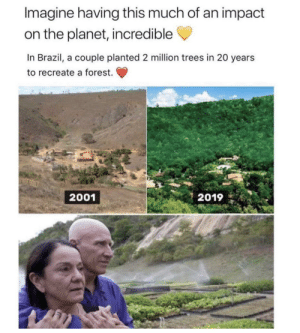 So incredible!: Imagine having this much of an impact  on the planet, incredible  In Brazil, a couple planted 2 million trees in 20 years  to recreate a forest.  2019  2001 So incredible!