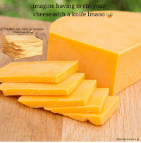 cheese: imagine having to cut your  cheese with a knife Imaoo  This post was made by sandwich  cheese gang  Randyx.xnova ig