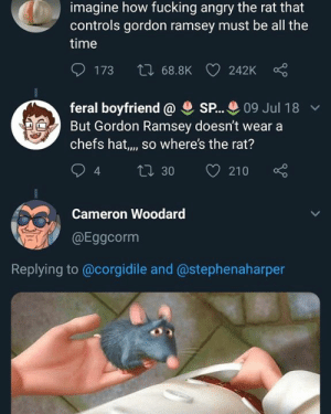 HUH: imagine how fucking angry the rat that  controls gordon ramsey must be all the  time  173  68.8K  242Kc  feral boyfriend SP... 09 Jul 18  chefs hat,., so where's the rat?  94 ti 30 210  But Gordon Ramsey doesn't wear a  Cameron Woodard  咇ǐ @Eggcorm  Replying to @corgidile and @stephenaharper HUH