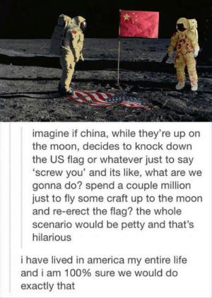 America, Anaconda, and Life: imagine if china, while they're up on  the moon, decides to knock down  the US flag or whatever just to say  'screw you' and its like, what are we  gonna do? spend a couple million  just to fly some craft up to the moon  and re-erect the flag? the whole  scenario would be petty and that's  hilarious  i have lived in america my entire life  and i am 100% sure we would do  exactly that Especially with whos in charge now