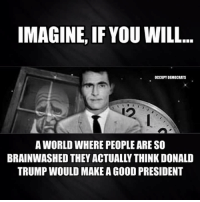 Memes, Live, and Presidents: IMAGINE, IF YOU WILL  OCCUPY DEMOCRATS  A WORLD WHERE PEOPLEARE SO  BRAINWASHED THEY ACTUALLY THINK DONALD  TRUMP WOULD MAKE AGOOD PRESIDENT Trumpanzees live in the twilight zone. ~Rick  Via Occupy Democrats