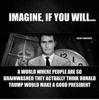 Memes, Twilight, and The Twilight Zone: IMAGINE, IF YOU WILL  OCCUPY DEMOCRATS  WORLD WHERE PEOPLEARE SO  BRAINWASHED THEY ACTUALLY THINK DONALD  TRUMP WOULD MAKE AGOOD PRESIDENT It really feels like the Twilight Zone...