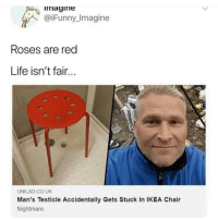 testicle: imagine  @iFunny_Imagine  Roses are red  Life isn't fair.  UNILAD.CO.UK  Man's Testicle Accidentally Gets Stuck In IKEA Chair  Nightmare