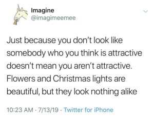 You're beautiful: Imagine  @imagimeemee  Just because you don't look like  somebody who you think is attractive  doesn't mean you aren't attractive.  Flowers and Christmas lights are  beautiful, but they look nothing alike  10:23 AM 7/13/19 Twitter for iPhone You're beautiful