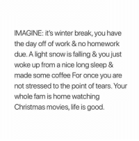 "Christmas, Fam, and Life: IMAGINE: it's winter break, you have  the day off of work & no homework  due. A light snow is falling & you just  woke up from a nice long sleep &  made some coffee For once you are  not stressed to the point of tears. Your  whole fam is home watching  Christmas movies, life is good. ""yOu KnOw YoU cAnT gEt OvEr Me"" First of all I got five boyfriends, but okay"