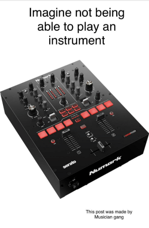 F off DJs: Imagine not being  able to play an  instrument  narkt  REVER  OinnoFADER  serato  Numark  This post was made by  Musician gang  IITII|||/  .ППППТ F off DJs