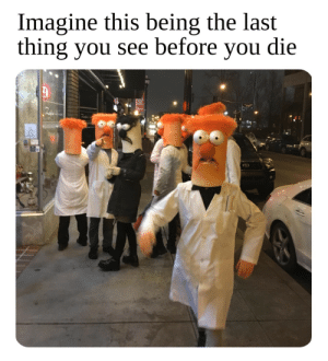 Meep mee mee meep by nwadd44 MORE MEMES: Imagine this being the last  thing you see before you die Meep mee mee meep by nwadd44 MORE MEMES