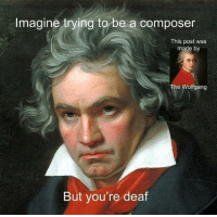 Imagine, Post, and Made: Imagine trying to be a composer  This post was  made by  The Wolfgang  But you're deaf Me🎵irl