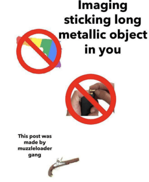 Just imagine lol: Imaging  sticking long  metallic object  in you  This post was  made by  muzzleloader  gang Just imagine lol