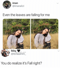 Fall, Memes, and 🤖: iman  @imanalizi  Even the leaves are falling for me  g:will.ent  @lbraaahim  You do realize it's Fall right? Damn