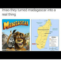 Advice, Memes, and Ocean: Imao they turned madagascar into a  real thing  Mozambique  Channel  INDIAN  MADAGASCAR  OCEAN  *Antananarivo  Madagascar  Travel Advice No delay