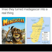 Advice, Bad, and Bailey Jay: Imao they turned madagascar into a  real thing  Mozambique  Channel  INDIAN  MADAGASCAR  OCEAN  *Antananarivo  Madagascar  Travel Advice  200 Lmao😂follow @codmemenation (me) for more! Like for good luck👊 ignore for bad luck😩 Tag a friend😎👍 ➖➖➖➖➖➖➖➖➖➖➖➖➖➖➖➖➖✔Credit:unknown DM for credit Follow my backup accounts @cod_meme_nation & @animal.angel ➖➖➖➖➖➖➖➖➖➖➖➖➖➖➖ ⏬ Hashtags (ignore) ⏬ cod game gaming gamer meme drake dog dogs cat cats trump 2017 battlefield battlefield1 gta gtav gta5 gtavonline comedy savage humor gamers Relatable Hilarious KimKardashian KylieJenner Squad Crazy Omg Epic