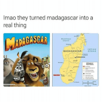Girl Memes, Indian, and Madagascar: Imao they turned madagascar into a  real thing  Mozambique  Channel  MADAGASCAR  INDIAN  OGEAN  ★ Antananarivo  Madagascar  avel Advce  20 😂😂😂😂