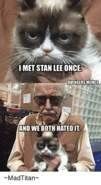 I hated it to- DarkseidΩ #GothamCityMemes: IMET STAN LEE ONCE!  AVENGERS MEMES  AND WE BOTH HATED IT  Mad Titan I hated it to- DarkseidΩ #GothamCityMemes