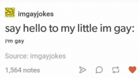 Hello, Tfw, and Tumblr: imgayjokes  say hello to my little im gay:  i'm gay  Source: imgayjokes  1,564 notes tfw you spend ages cropping and filtering photos before you realise you're oN tHe WrOng AcCoUnNT (i should have just screenshotted but i didn't think of it so i tried to replicate it but the app crashed like twice rip i ended up with something different but w-e) ~Ray