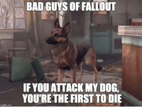 Bad, Memes, and Fallout: imgflip com  BAD GUYS OF FALLOUT  IF YOU ATTACK MY DOG.  YOURE THE FIRSTTO DIE Dogmeat is too important  -MacCready